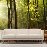 3d orman manzaralı dekoratif poster