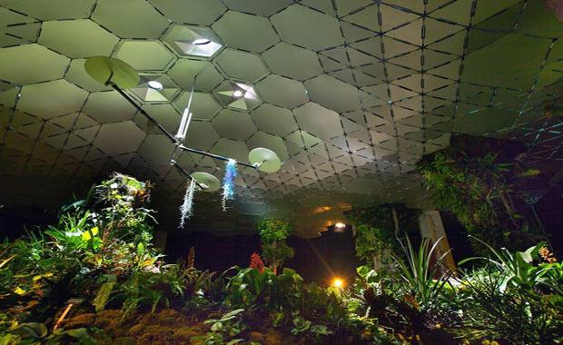 dünyanın ilk yeraltı parkı 2
