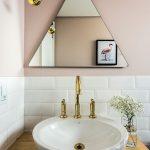 pudra rengi banyo duvar boyası