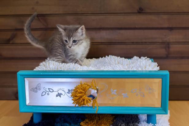 Evcil Hayvan Yatağı Yapımı