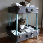 Vintage bavulları kedicikler için rahat yataklara dönüştürün