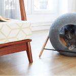 2016 modern kedi mobilyaları