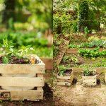 bahçede ahşap kasalar ile sıcak bir tarz
