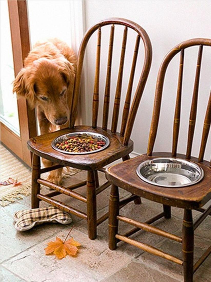 ahşap sandalyelerden sevimli dostlara yemek masası yapımı