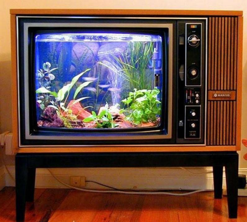 eski tüplü televizyonu akvaryuma çevirmek