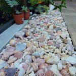 midyelerden-dekoratif-urunler